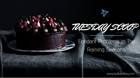 [Tuesday Scoop] Fondant Problems in The Rainy Season