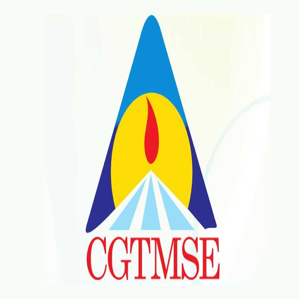 cgtmse-scheme for small business owners