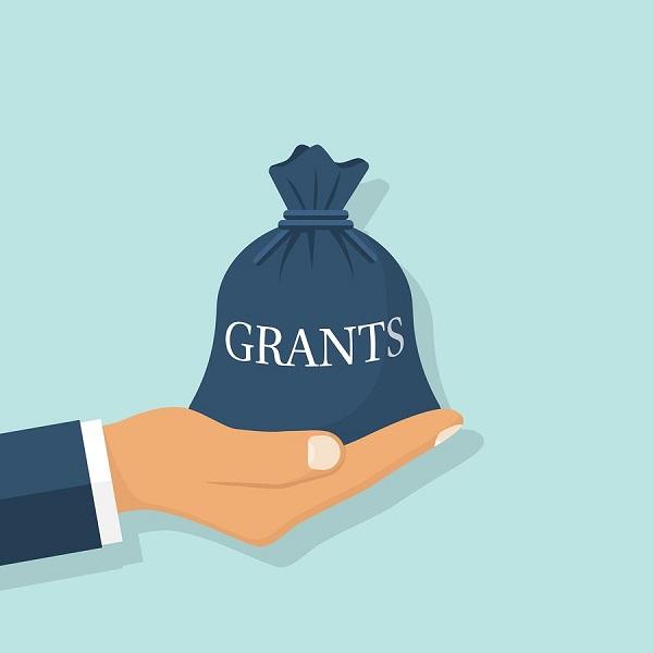 Investors grants
