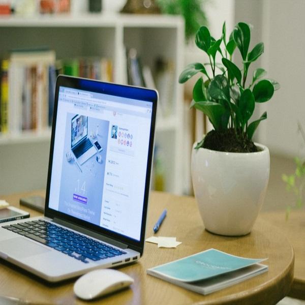 workspace elements