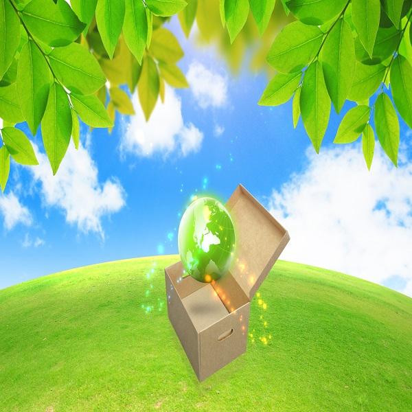 Eco-friendly Blog   Bulb And Key