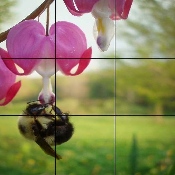 Use grid-lines to balance your shot | bulb and key