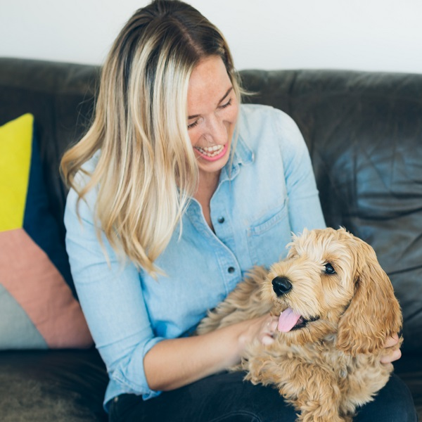 Become a pet sitter | bulb and key
