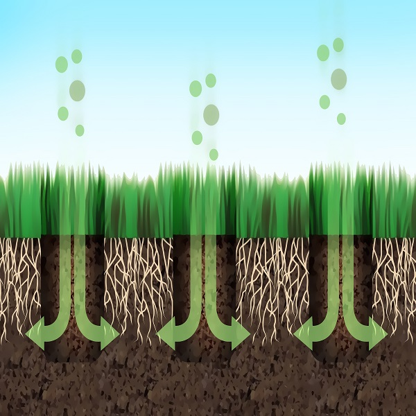 What is Aeration?